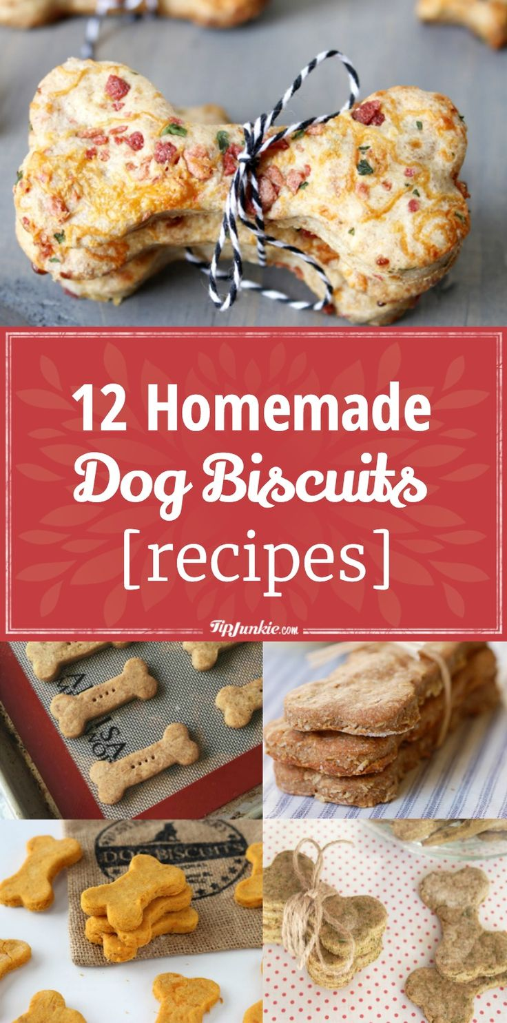 12 Homemade Dog Biscuits [recipes] via @tipjunkie