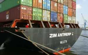 Pro-Palestinian protesters on Monday continued a campaign to block an Israeli commercial vessel from docking in Oakland, California for a third day. About 20 protesters arrived at the port at 5 a.m. local time to block the container ship owned by Zim Shipping Services Ltd., one of the world's largest container shipping companies, from entering […]