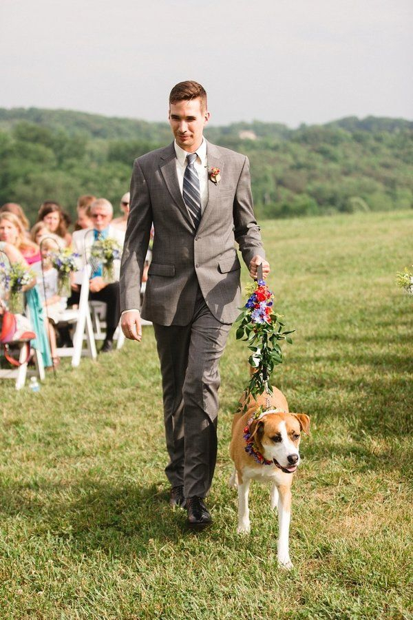 Wedding pet idea - dog as the ring bearer/ flower girl- pup with greenery + floral leash {Courtesy of The Huffington Post}