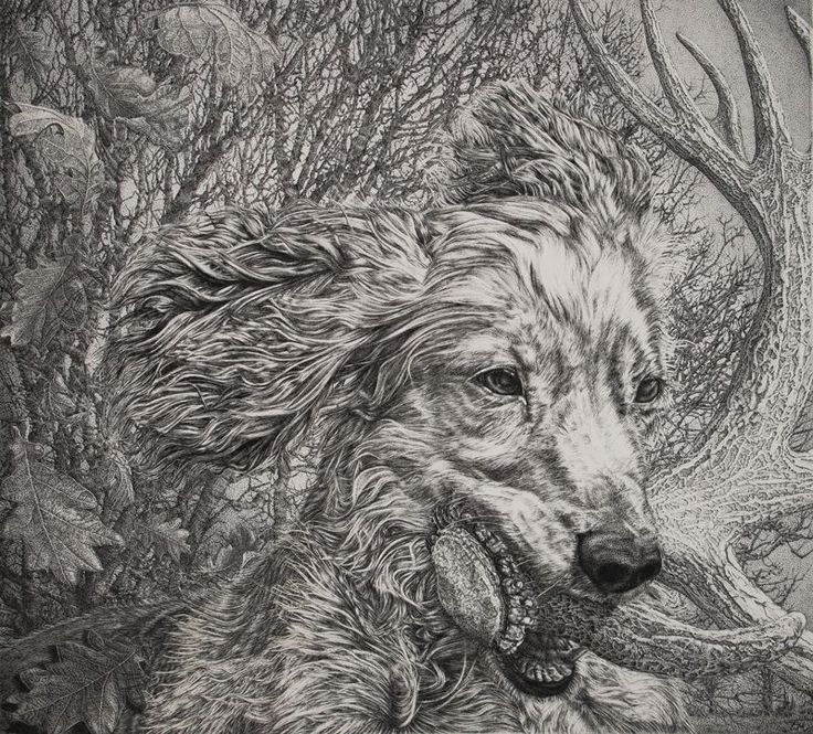 Shortlisted artist: JANE ELIZABETH MARTIN, Bravado, technical pen and ink on watercolour paper, 55x50cm. Have your say in the Readers' Choice award – Artists of the Year 2017. Vote today > http://www.artistsandillustrators.co.uk/shortlist2017 #AOTY2017