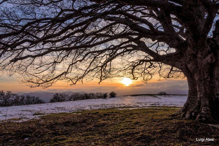 tramonto - Canfaito