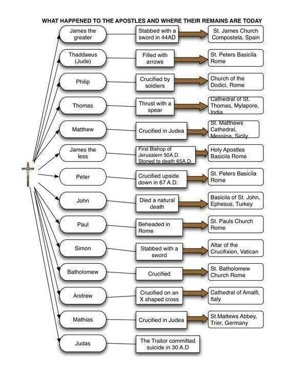 an analysis of catholic church Financial reporting in the catholic church case solution,financial reporting in the catholic church case analysis, financial reporting in the catholic church case study solution, the catholic church is a large and complex international organizations with multiple layers of management spread across a wide range of services and geogra.