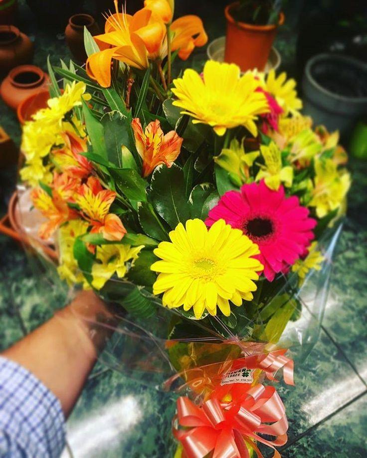 �� RIVERA FLORES ��#Flores ��#Plantas ��#Regalos �� www.riveraflores.com �� floreriariveraflores@gmail.com ☎ (598)27087800 �� Avda Rivera 2663 �� Montevideo-Uruguay  #florería #decoraconflores  #decor #decorar #homedecor #flowerslovers #flowers #flower #flowerstagram #blossoms #flowersofinstagram #naturaleza #nature #naturelovers #regalaflores #jardín #cool #Montevideo #Uruguay http://gelinshop.com/ipost/1516222683711304809/?code=BUKtH9fAHRp