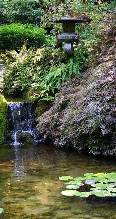 1000  images about backyard waterfalls and streams on pinterest