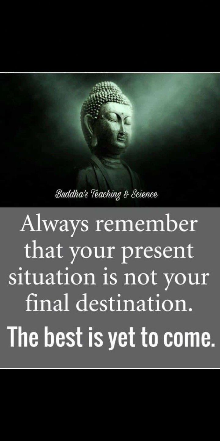 Pin By Babliii On Buddha S Teaching Quotes Buddha Quote