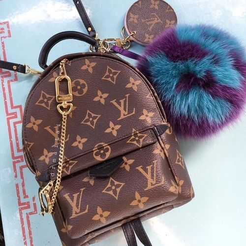 Imagem de accessories, bag, and Louis Vuitton