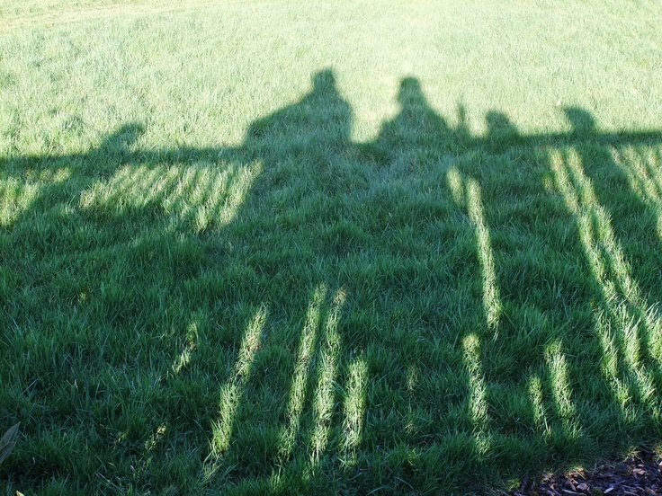 on the grass (by Pingwynne)
