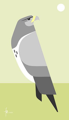 black-chested buzzard-eagle by Charley Harper