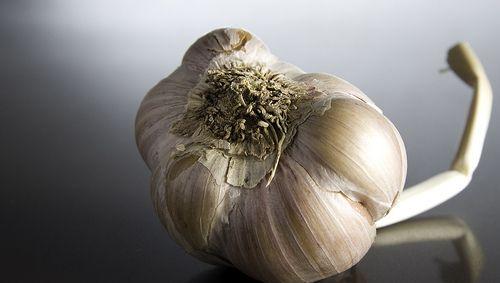 Vampire's Nightmares (garlic, ajo, ingredients)