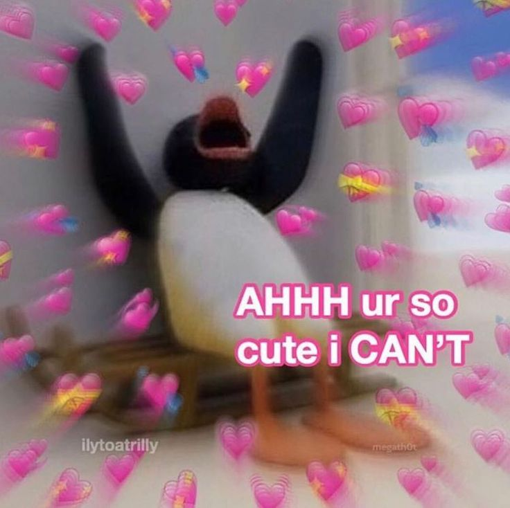 Memes To Send To Your Crush Freaky Cute Memes Wholesome Memes Love You Meme