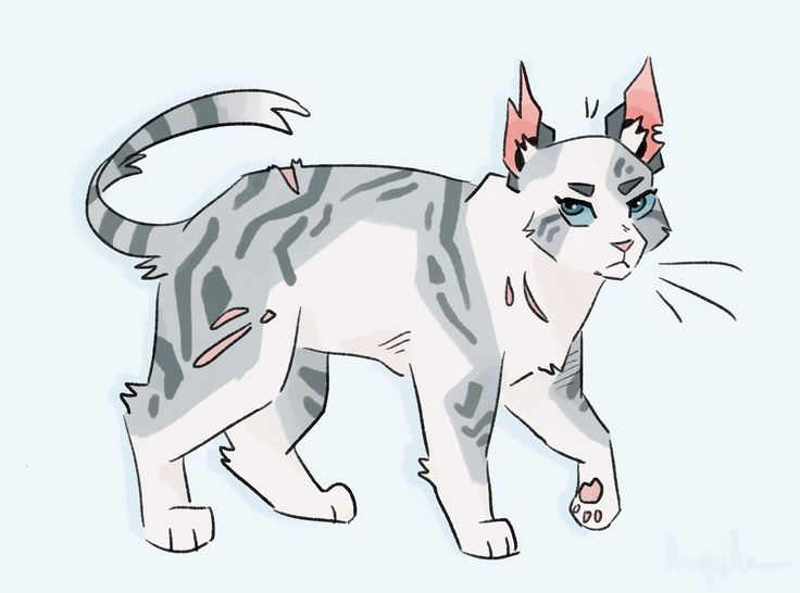 100 Warrior Cats Challenge #26- Ivypool One of my favorite characters