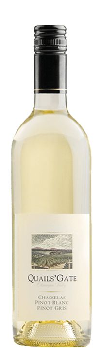 The top-selling BC VQA white wine in BC, this is our most popular white wine. It is fresh, fruity and off-dry in style and a true crowd pleaser. Chasselas was the first vinifera grape grown on our Estate and has a long history at the property.