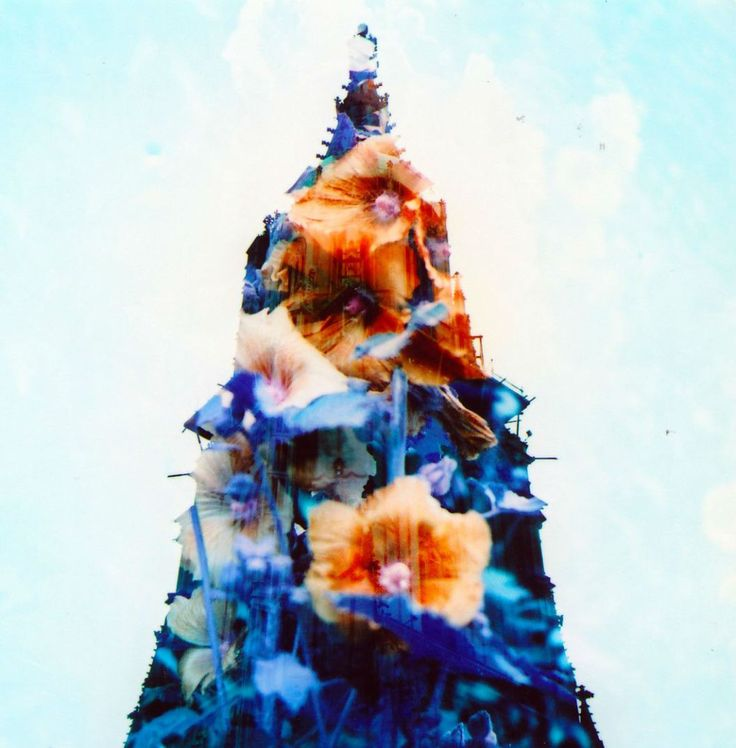 #Schweiz #Switzerland #MX #Doubleexposure #Lubitel (c) Lomoherz.de double-exposed Lomochrome Purple