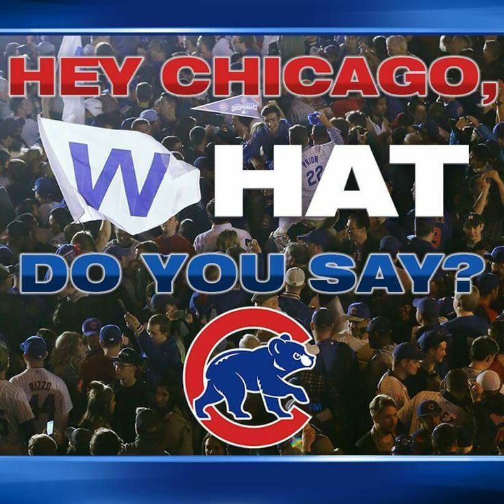 1135 Best Chicago Cubs Images On Pinterest Chicago Cubs