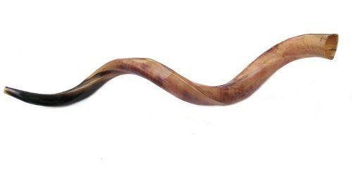 rosh hashanah horn