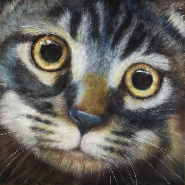 Tabby by Linnell Esler -- awesome painting!