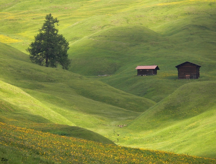 http://roberitatesac.wix.com/roberita-tesac Alps