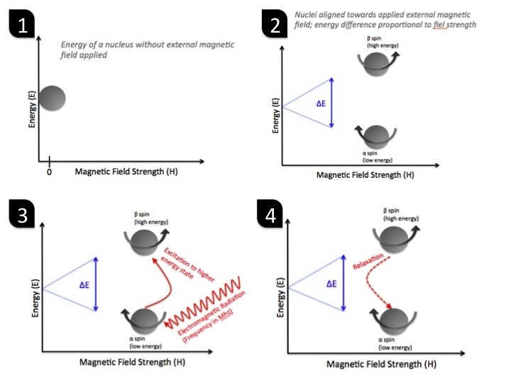 NMR In A Nutshell - Nuclear Magnetic Resonance Spectroscopy Explained Simpler Than Usually