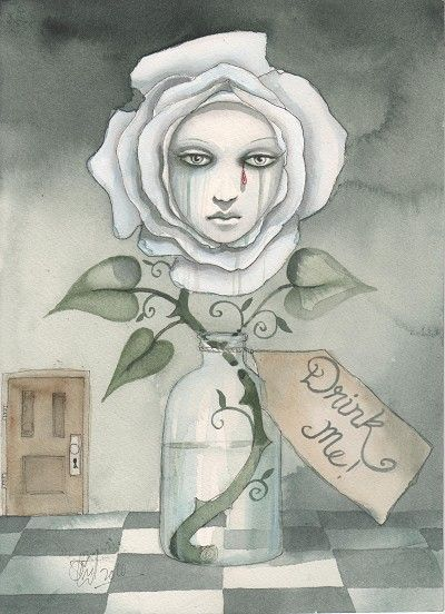 Illustration from the 'Through A Dark Looking Glass' series by Dominic Murphy