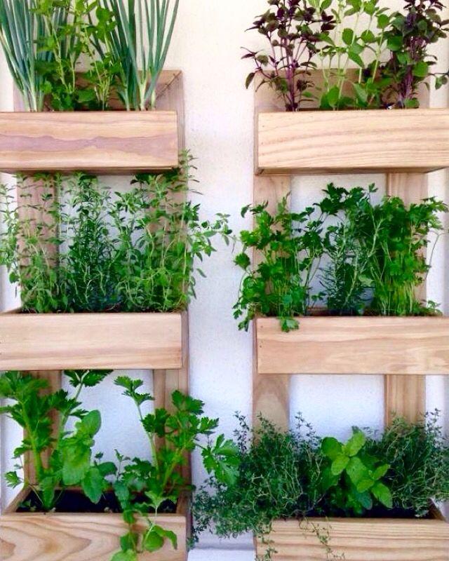 Horta Vertical para ambientes com pouco espaço. By Mahá Paisagismo.