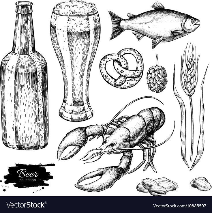 Beer set Alcohol beverage hand drawn vector image on