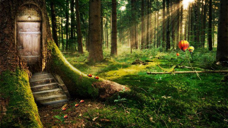 zauberwald - Bing Bilder