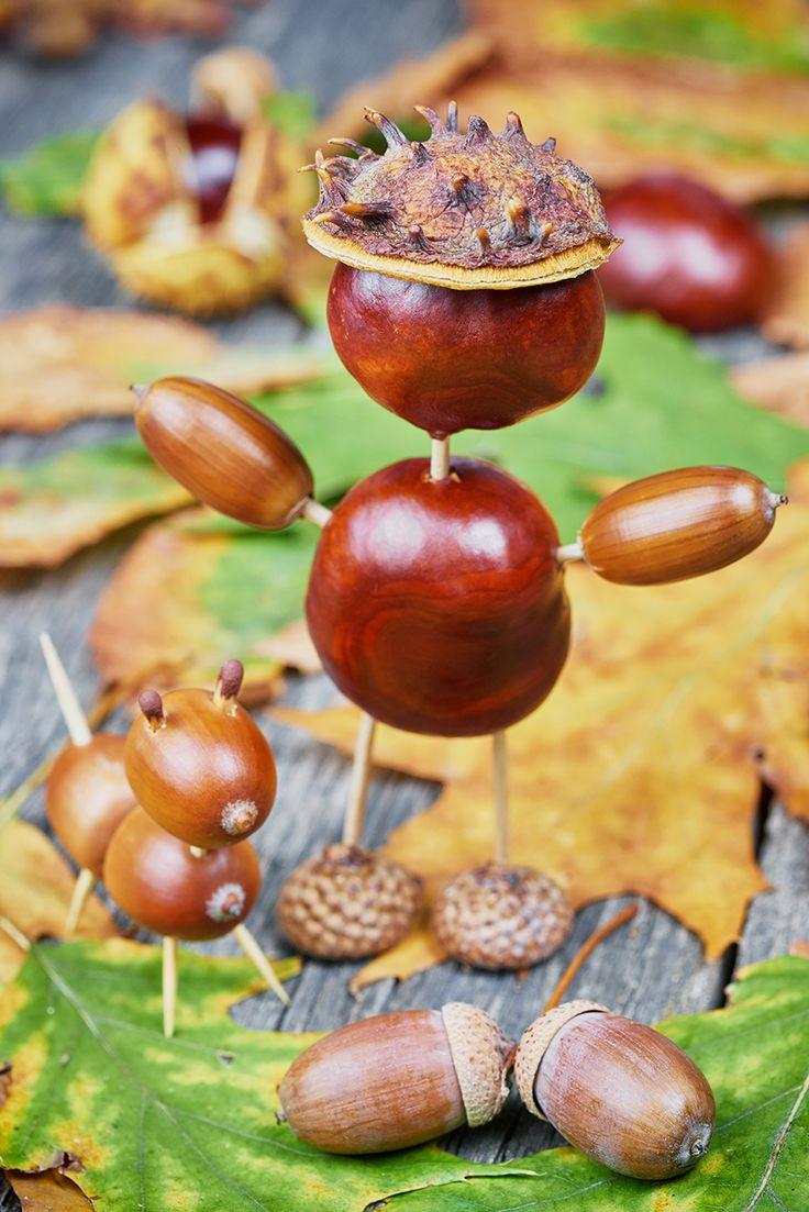 Kreatív ötletek őszi termésekkel - Lurkovarázs.hu - Kreatív feladatok gyerekeknek