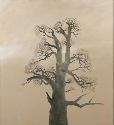 Monastery Chestnut Tree - Stefan Caltia