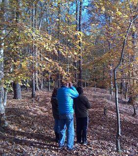 Caroline County MD Bird Club: Caroline County Bird Club's Nov 8, 2015 bird walk ...