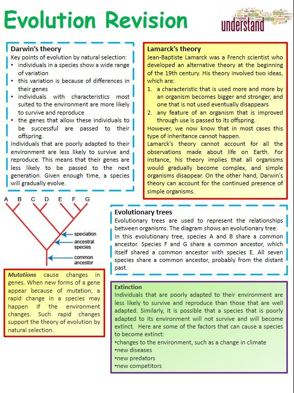 84 best AJA - GCSE Biology resources and revision ideas images on - fresh periodic table aqa gce