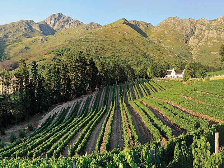 For a classic country Cape experience, head to the winelands (wine-growing region) and treat yourself to a stay in Franschhoek. ~TravelSmith~