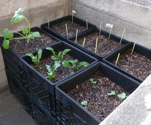 Milk Crate Air-Pot Urban Container Gardening--I have a bunch of milk crates. Hello herb garden!