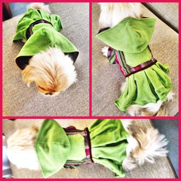 petshop köpek malzemeleri kopek kıyafetlerı köpek kıyafetleri kopek elbıselerı köpek elbiseleri kopek elbise köpek elbise dog clothes köpek modası kopek modası dog fashıon köpek için kıyafet kopek ıcın elbise köpek için elbise köpek paltosu köpek montu köpek ceketi köpek tişörtü KÖPEK KIYAFETİ KÖPEK ELBİSESİ KÖPEK ÜRÜNLERİ KÖPEK ÜRÜNÜ KÖPEK GİYİM