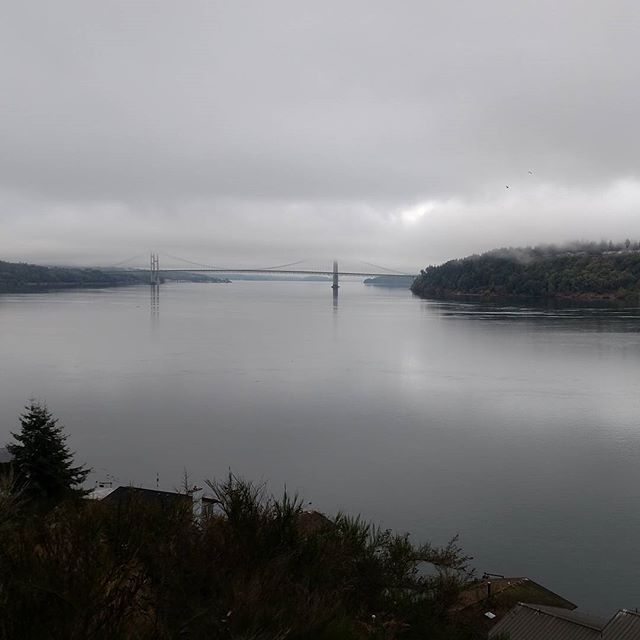 View of the Tacoma Narrows and the bridge from the hill this morning. Calm and peaceful.