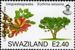 Stamp: Large leaved Coral Tree (Erythrina latissima) (Swaziland) (Trees of Swaziland) Mi:SZ 784,Yt:SZ 764,WAD:SZ008.07