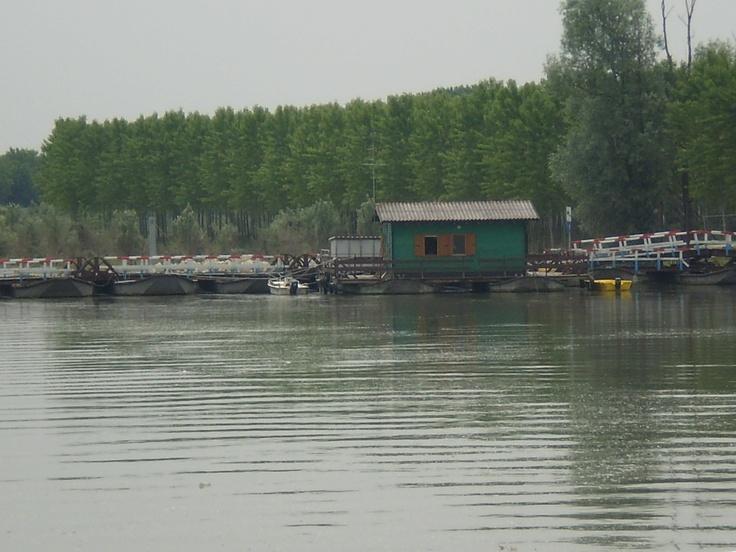 fiume po lombardia Mantova Italy
