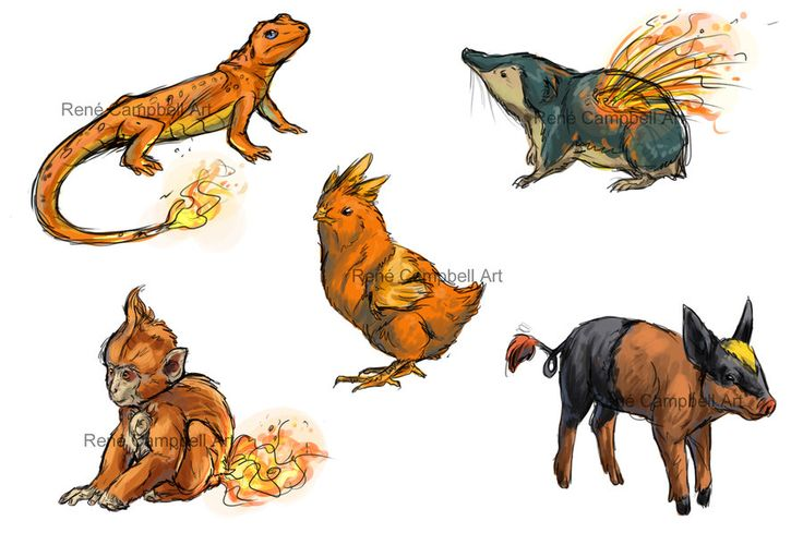 Realistic Pokemon Sketches: Fire Starters by ReneCampbellArt.deviantart.com on @deviantART