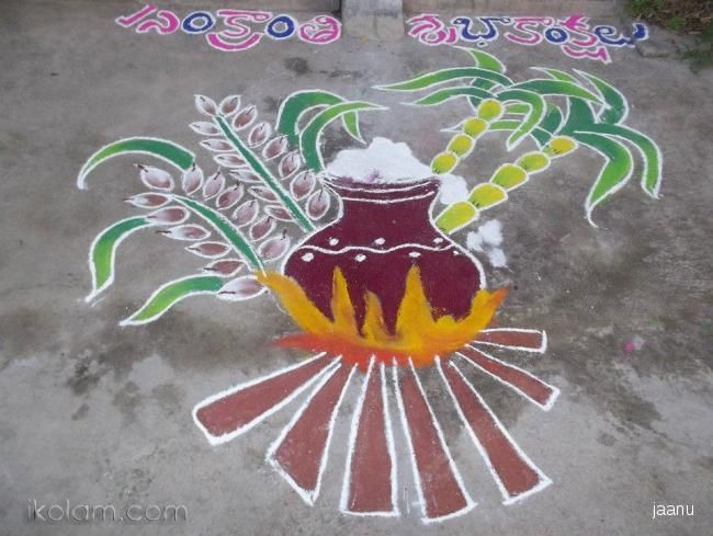 Rangoli Pongal Kolam freehand   www.iKolam.com