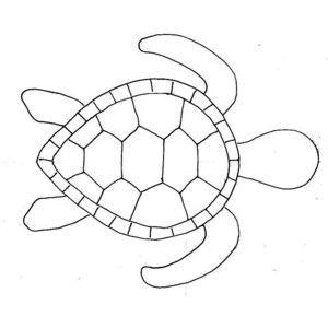 turtle template - mobile