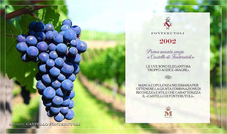 Tutte le uve dell'annata 2002 vengono destinate al Chianti Classico Fonterutoli. @marchesimazzei #fonterutoli #marchesimazzei #wine #tuscany