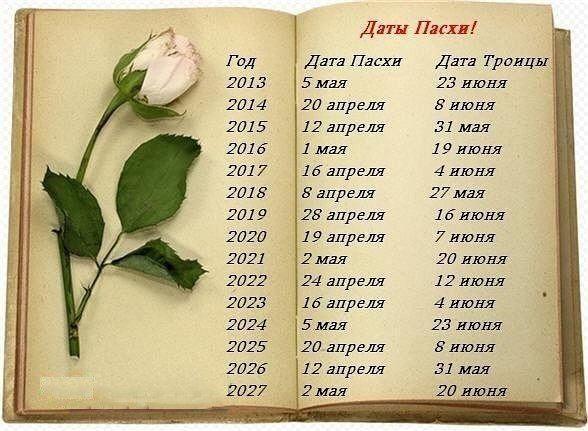 Анна Шмелёва