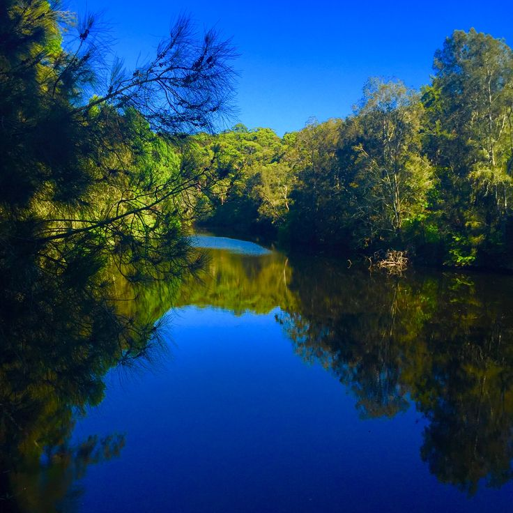 Lane Cove National Park, NSW, #Australia. The mighty and calm Lane Cove River.