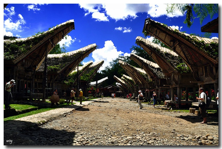 Kate'kesu Village, Tana Toraja, Indonesia.
