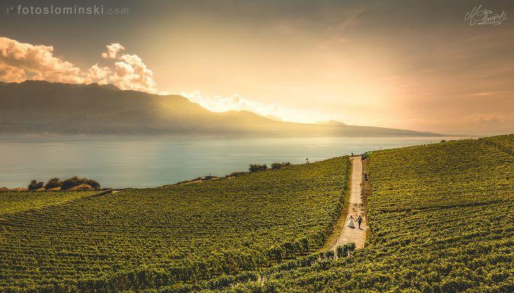 Sesja ślubna za granicą - Szwajcaria winnice koło Montreux - Fotografia ślubna Wrocław #ZdjęciaSłomińśkiego. Fotograf Wrocław. Jak Wam się podoba ?