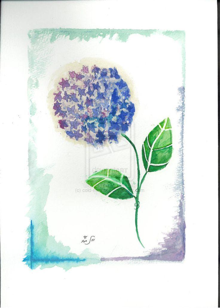 my hydrangea flower by cold-memory on DeviantArt