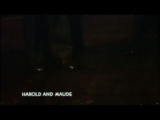 HAROLD AND MAUDE  Director: Hal Ashby  Country: USA  They met at the funeral of a perfect stranger. From then on, things got perfectly stranger and stranger.