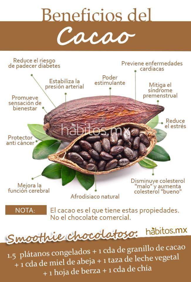 ¡Los beneficios del cacao!