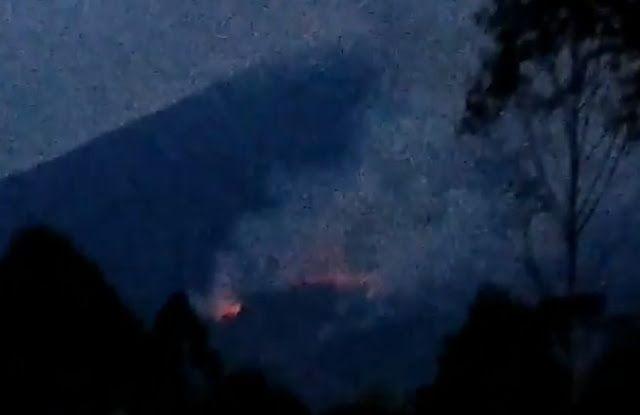Gunung Cikuray Kembali Terbakar Usut Pelaku Pembakaran Hutannya Hutan Langit Pegunungan