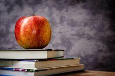 С чего начать самообразование?