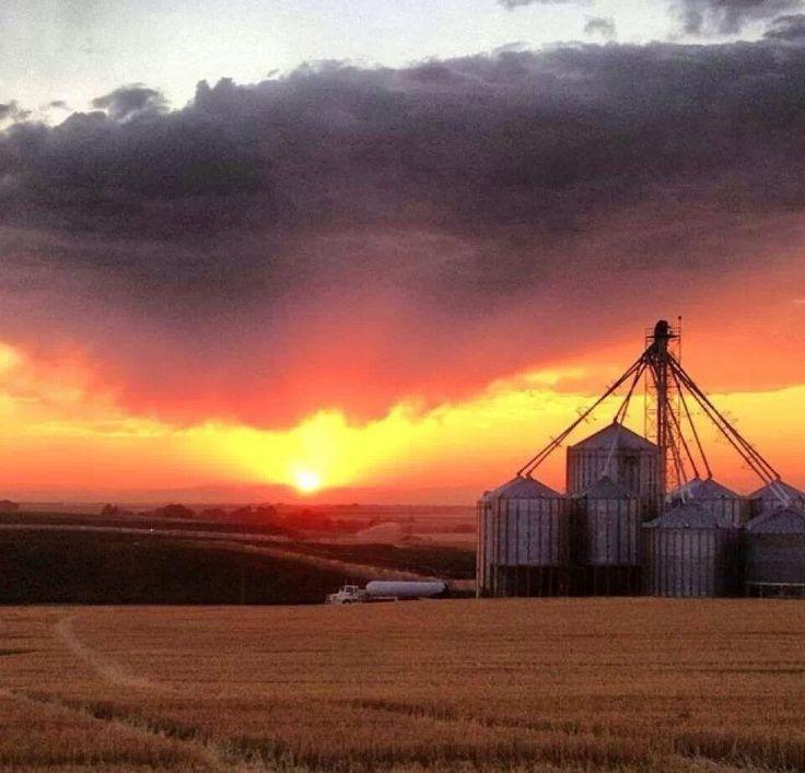 254 best IDAHO images on Pinterest | Idaho, Idaho falls and Beautiful places